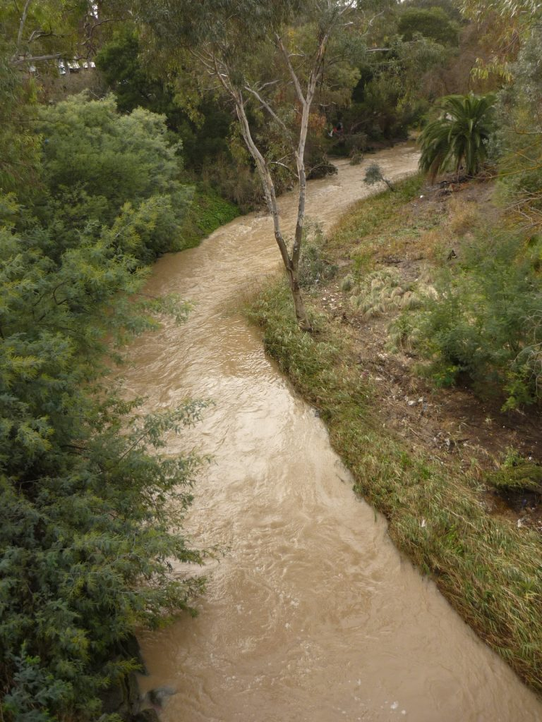 Merri Creek gets muddy
